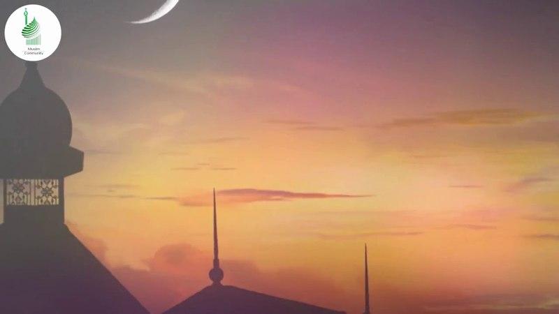 Правильные советы. «В преддверии Рамадана», шейх Мухаммад Гига