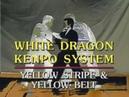 WHITE DRAGON KENPO SYSTEM YELLOW BELT
