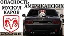 Dodge Challenger Челенджер СЛИШКОМ ОПАСНЫ ДЛЯ ОБЫЧНЫХ ВОДИТЕЛЕЙ МОЩНОСТЬ ПО АМЕРИКАНСКИ