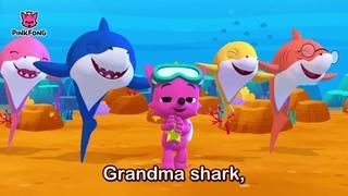 Bayi Shark I Lagu untuk Anak anak