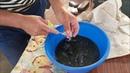 Инкубация клариевого африканского сома Нерест мраморного сома