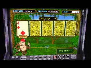 Самый лёгкий способ выиграть в казино вулкан. Автомат Crazy Monkey