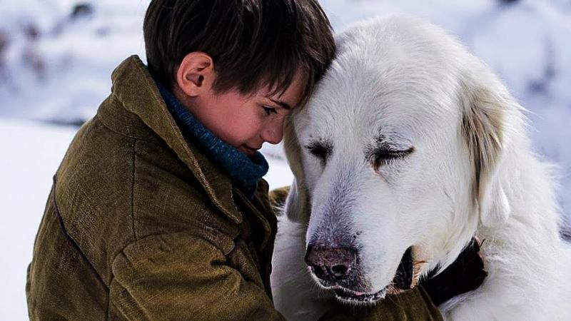 Белль и Себастьян — Русский трейлер (2018) / Франция (2013) / приключения семейный / Belle et Sébastien / часть 1