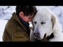 Белль и Себастьян Русский трейлер 2018 Франция 2013 приключения семейный Belle et Sébastien часть 1