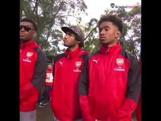 One of our memorable moments from last summers tour... - - Checking out the wildlife at @TarongaZoo... - - Sorry, @alexiwobi