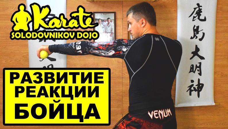 Развитие реакции и ловкости для бойца каратэ | мма | бокс | таэквондо | the reaction of the f...