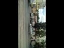 Дима-Митька Бригада - Live