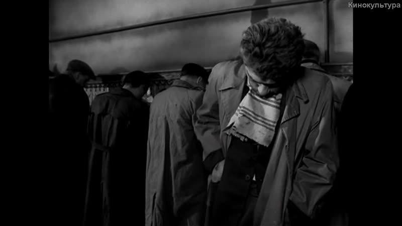 «Короткометражные фильмы Романа Полански» |1957| драма, мистика, сюрреализм, абсурд