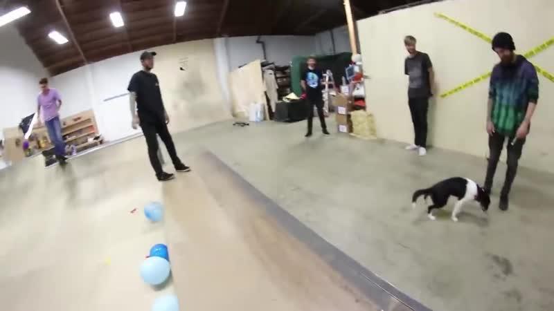 [Braille Skateboarding Russia] НЕРАЗРУШИМЫЙ СКЕЙТБОРД!?!
