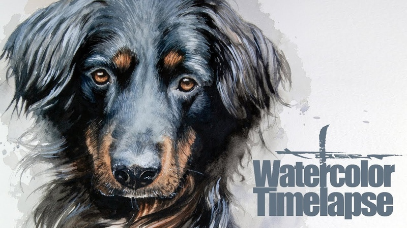 Watercolor [Speed painting - Timelapse] Dog Portrait - Emil - Border Collie Labrador Mix