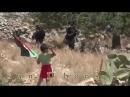 Палестинец посылает своего ребенка бросать камни в израильских пограничников 360