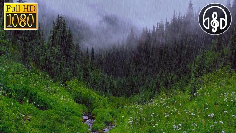 Успокаивающий Шум Дождя и Грозы, Раскаты Грома, Пение Птиц, Звуки Реки 3 Часа Глубокого Сна