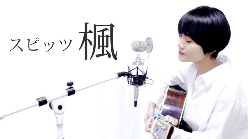 【感動CM】女性が歌ってみたスピッツ楓Covered by BEBE