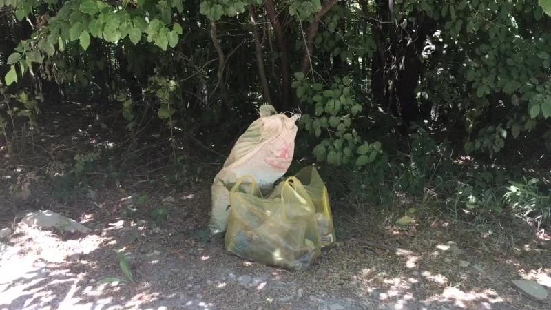Берегите природу вашу мать... я, лес, природа, озеро, Новороссийск, мусор, совесть есть? (продолжение)