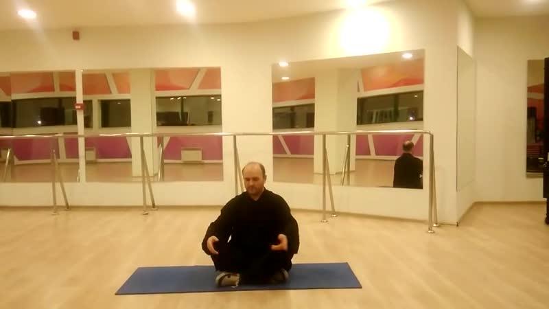 упражнение-вставание с помощью потока ци и выбросом фа-цзинь