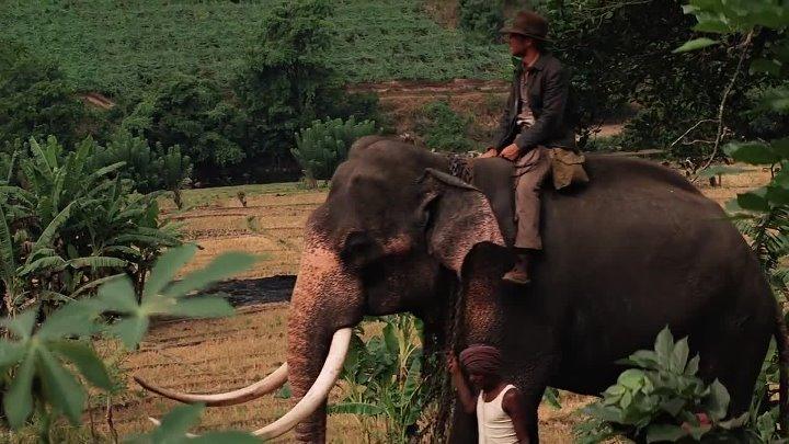 Indiana Jones 2 - y el Templo Maldito