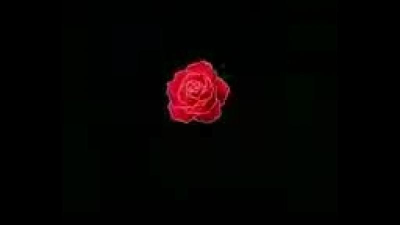 Сейлор Мун 3 сезон 34 серия ' Пробуждение Мессии' ( 123 серия ).3gp