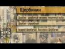Все фамилии России Выпуск № 88