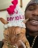 """🐰МИЛЫЕ ЖИВОТНЫЕ🐨 on Instagram: """"Это очень круто😄😍 ❤ Лайк, если любишь животных😉 By: @iammoshow ✅ Подписывайтесь на @mimiha.lol ➖➖➖➖➖➖➖➖➖➖➖➖ кот ..."""