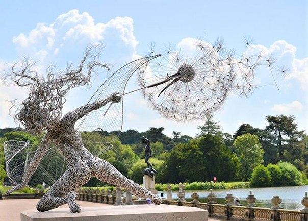Удивительные скульптуры из стальной проволоки Робин Уайт — скульптор из Великобритании, который работает с нержавеющей стальной проволокой. Робин освоил создание красивых и сказочных скульптур,