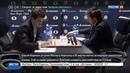 Новости на Россия 24 • Шахматы. Карлсен обыграл Карякина и сравнял счет