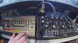 Roland TR08 &amp Moog Mother 32
