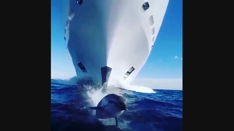Njord.yachtInstaUtility_2f123.mp4
