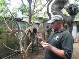 Бамбуковый лемурКРУГОСВЕТКА. Madagascar.Nosy-Be. LEMURIA LAND