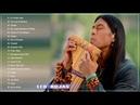 موسيقي الهنود الحمر