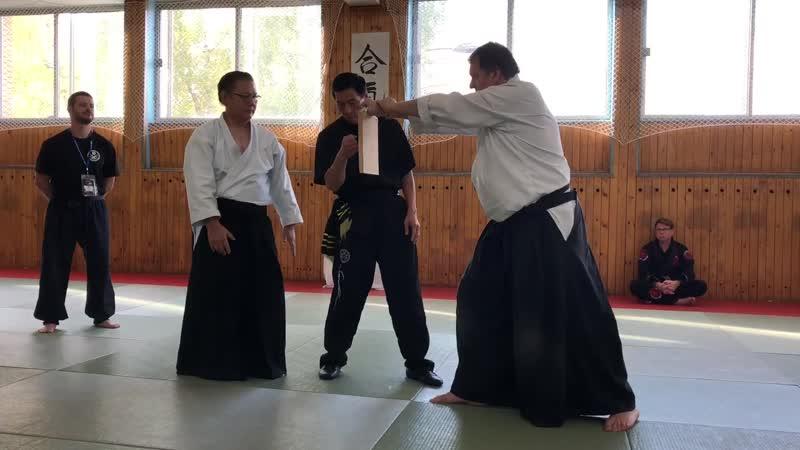 Tokuyu Uza разбивает дощечку одним ударом Международный Будо Фестиваль 2018 г