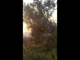 Пожар в Азовском районе