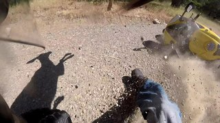 Dog Collides With R1 | Narrowly Misses Deer