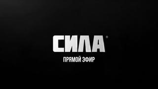 UFC 230: Кормье  Льюис (4 ноября в 1:30 МСК)