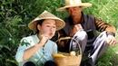 8年来第一次在家过中秋,约着叔叔上山掏了窝蜂蜜,自己做了中秋节吃3034