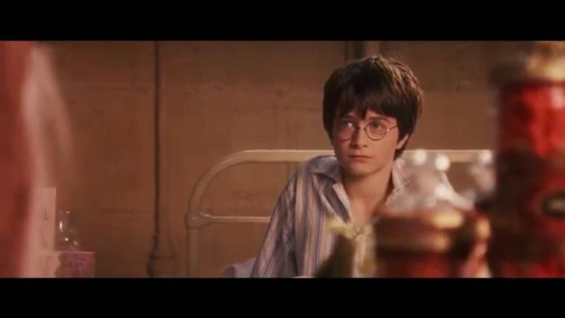 Bertie Botts Harry Potter