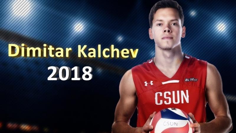 Cool volleyball player Dimitar Kalchev