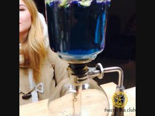 Синий чай - #Secret _Tea_Club