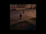 Появилось видео жестокого убийства в Волжском