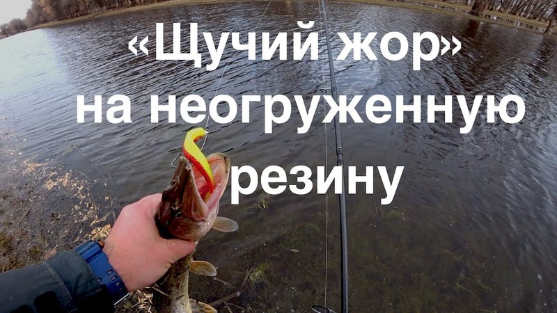 ЩУЧИЙ ЖОР Безумный и безудержный!!На неогруженную резину!!
