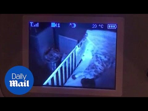 Dad spots something on baby monitor that leaves him pale as a ghost