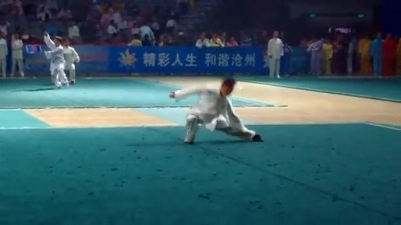 Ученик Ван Чжихая Чжан Цзянь