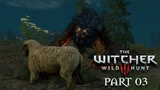 The Witcher 3 Wild Hunt Walkthrough Gameplay Part 3 - The Beast Of White Orchard (PS4)