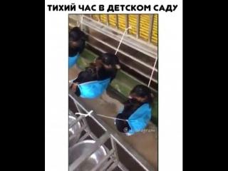 Тихий час в детском саду )))