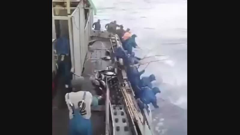 Вот это Рыбалка 🐠 🐠 🐠