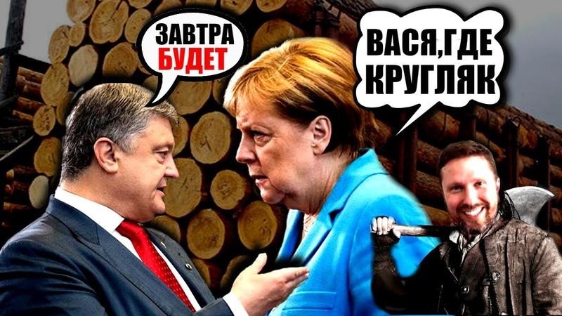 ЗАКОН Порошенко под КРУГЛЯК Как Меркель ВОРУЕТ лес Украины Шарий предупреждал
