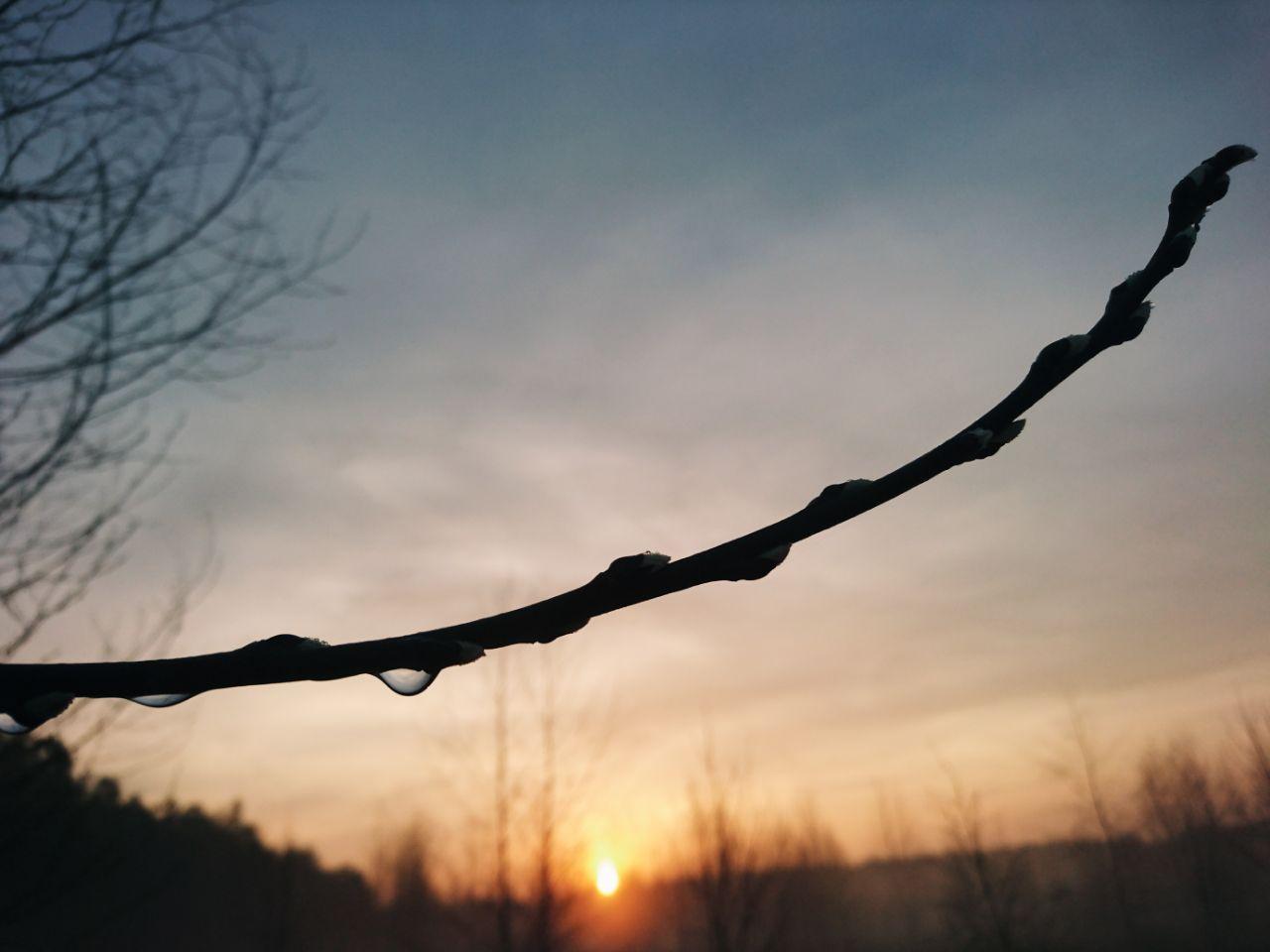 Рассвет на Лесовье