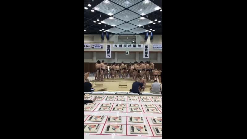 春巡業柏市 場内は開場前から幕下以下の力士による稽古が行われています sumo 相撲