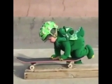 ребёнок на скейте