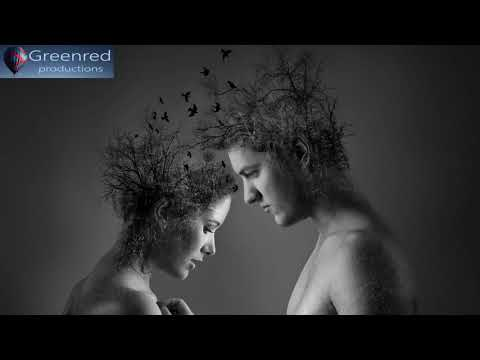 Focus Music - Binaural Beats Focus Music for Better Concentration, Study Music, Memory Music