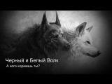 Как кормить своего белого волка? Красивая песня по мотивам известной притчи